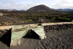Crops viticulture  winery lanzarote spain la geria Royalty Free Stock Photography
