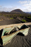 Crops viticulture  winery lanzarote wall   cultivation barrel Stock Images