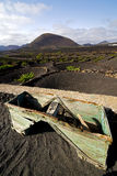 Crops viticulture  winery lanzarote wall   cultivation Stock Image