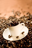 Cup of Espresso Royalty Free Stock Photography