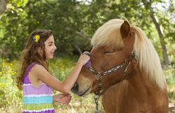 Cute Little  Girl Outside Brushing Her Pony, Stock Photos