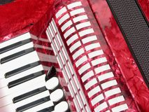 Cutout with accordion Royalty Free Stock Image