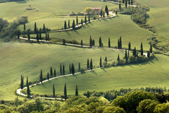 Cypresses and roads of Tuscany Stock Photo