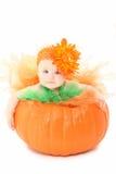 De Baby van de pompoen Stock Foto