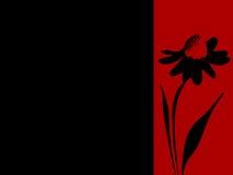 De de gestempelde Banner of Prentbriefkaar van de Advertentie van Daisy Stock Foto's