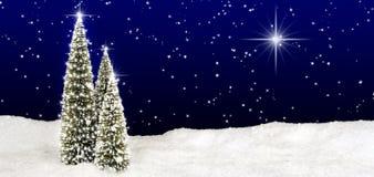 De Hemel van de Ster van kerstbomen Royalty-vrije Stock Afbeeldingen