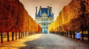 De herfst in Parijs Stock Afbeeldingen
