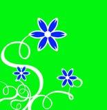De Krullen van het decor met Blauwe Bloem & Groene Achtergrond Stock Foto