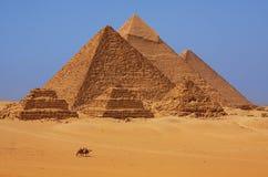 De piramides in Giza in Egypte Royalty-vrije Stock Foto's