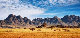 De Woestijn van Namib Stock Fotografie