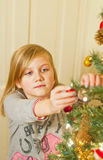 Decorating the christmas tree Royalty Free Stock Photo