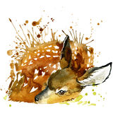 Deer T-shirt graphics, deer illustration with splash watercolor textured background. Royalty Free Stock Photos