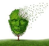 Dementia Disease Stock Photography