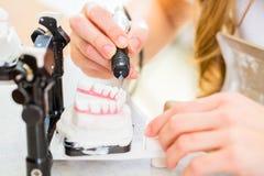 Dental technician producing denture Stock Photography