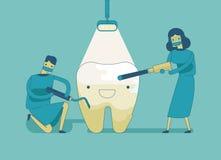 Dentist doing a dental treatment the tooth Stock Photos