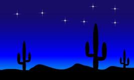 Desert with cactus plants. Night Stock Photography