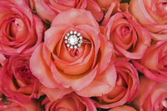 Diamond ring and roses Stock Photo