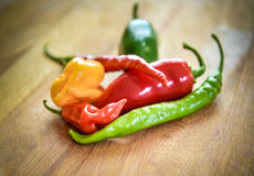 Different Variety of chillies Royalty Free Stock Photography