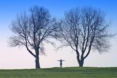 Dimensión de una variable humana y árboles Imagenes de archivo