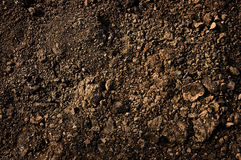Dirt texture Stock Images