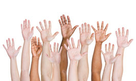 Diverse Group of Hands Raised up Royalty Free Stock Images