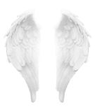 Divine Light White Angel Wings Royalty Free Stock Image