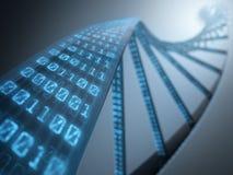 DNA-Binair getal Stock Afbeelding