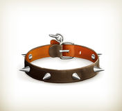 Dog collar Royalty Free Stock Photos