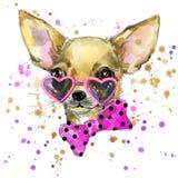Dog fashion T-shirt graphics. dog illustration with splash watercolor textured  background. unusual illustration watercolor puppy Stock Images