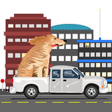 A dog and a truck. Stock Photography