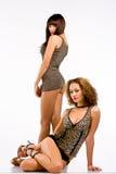 Donne sexy in biancheria Fotografia Stock Libera da Diritti
