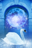 Dream land Royalty Free Stock Images
