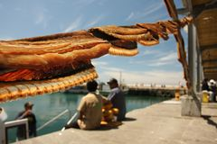Dried fish Royalty Free Stock Photo