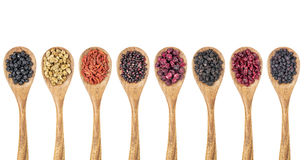 Dried superfruit berry set Stock Photography
