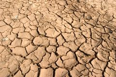 Dry Mud Stock Photos