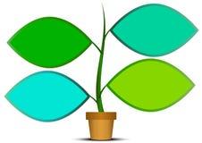 Drzewo infographic Zdjęcie Royalty Free