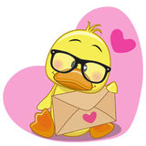 Duck with envelope Royalty Free Stock Photo