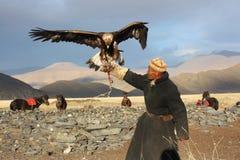 Eaglehunter in mongolia Stock Image