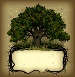 Eichenbaum wih eine Fahne Lizenzfreie Stockbilder