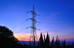 Electrical pylon among bushes backlit before sunrise Royalty Free Stock Image