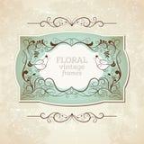 Elegance vintage frame Stock Images