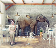 Elephant calm in a restaurant Royalty Free Stock Photos