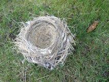 Empty nest syndrome Stock Photography