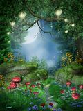 Enchanted forest with lanterns Stock Photo