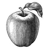 Engraved apple Stock Image