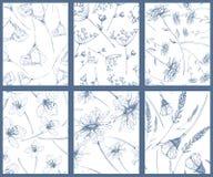 Ensemble de modèle de fleur Photos libres de droits
