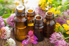 Essential oils and medical flowers herbs Stock Photos