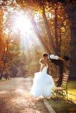 Europäische Braut und Bräutigam Stockbilder