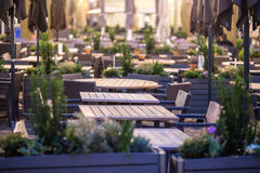 Evening terrace Stock Images