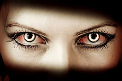 Evil zombie eyes Stock Image